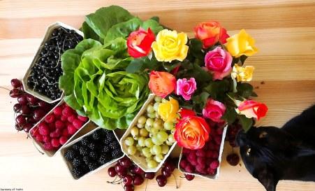 lokalne owoce2