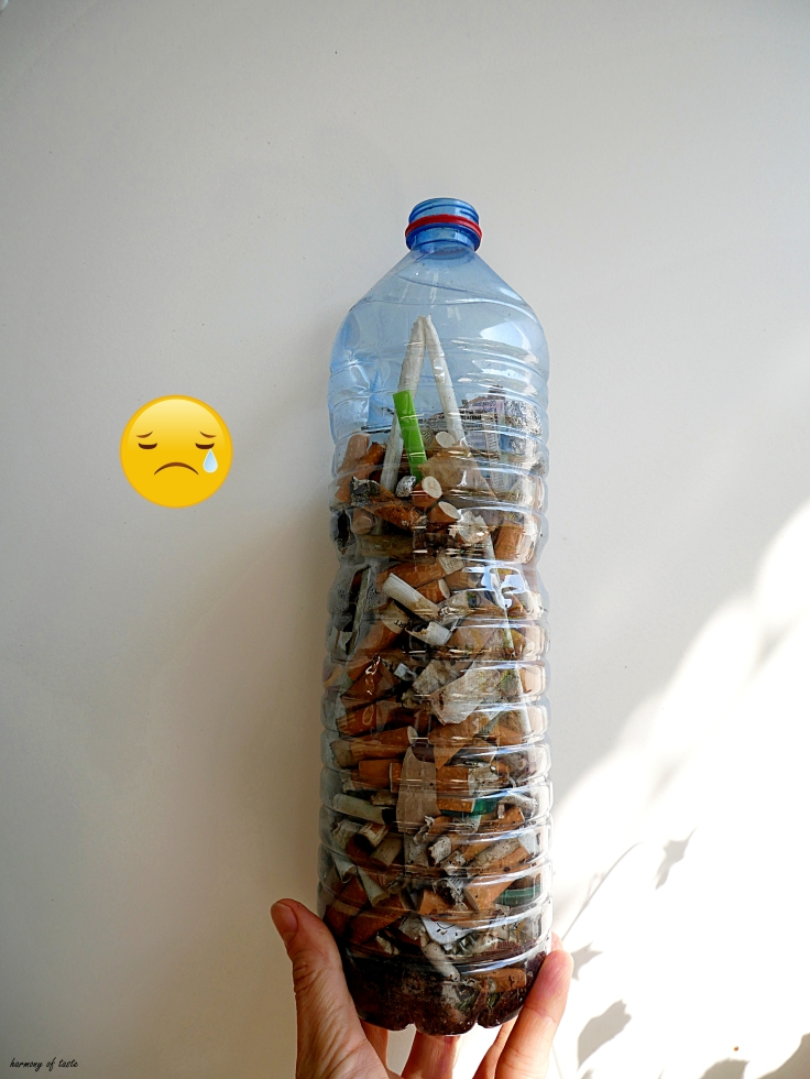 cigarettesbutts in Constance.JPG