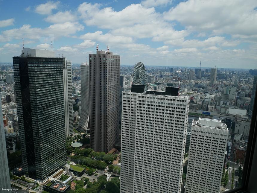 Tokyo View3