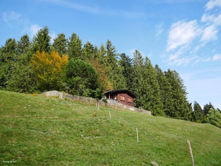 Bödele, Austria 1