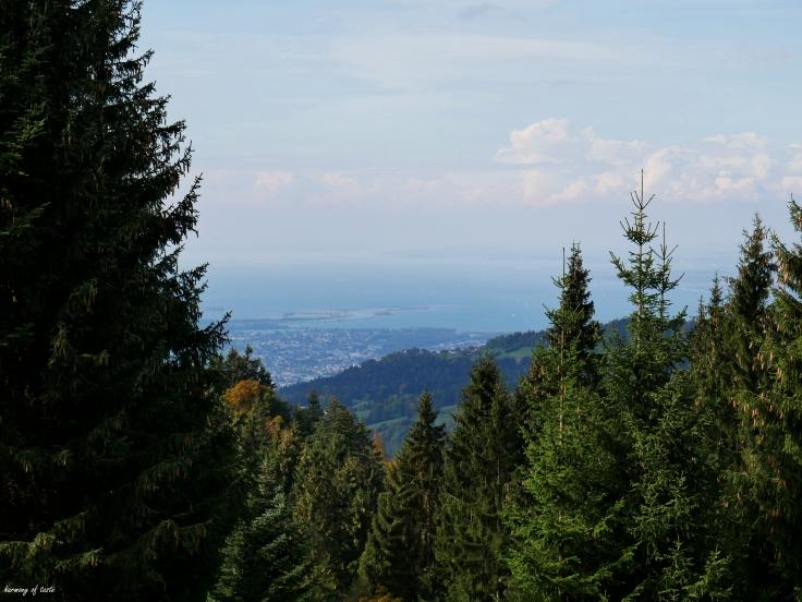 Bödele, Austria 5