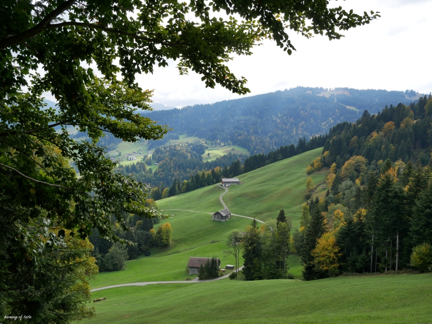 Bödele, Austria 6