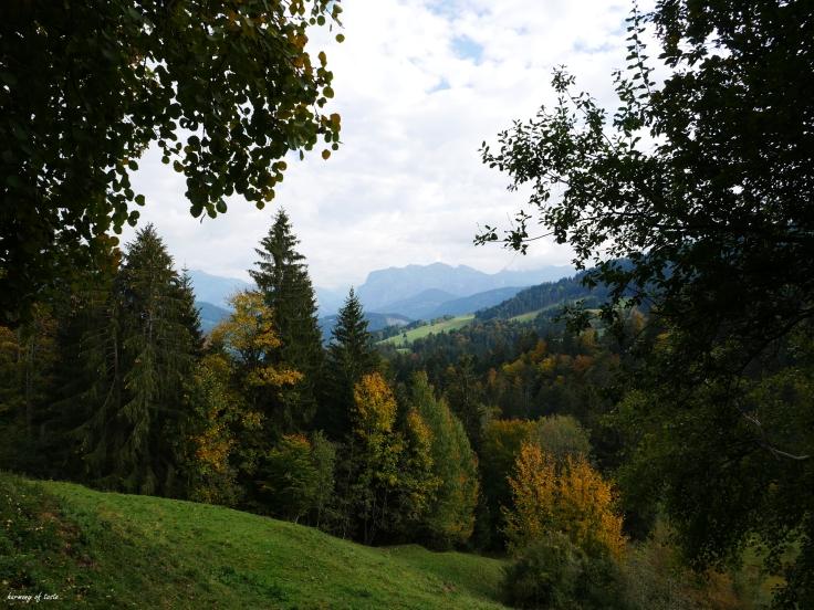 Bödele, Austria 9