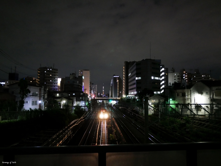 night walk, Tokyo.JPG
