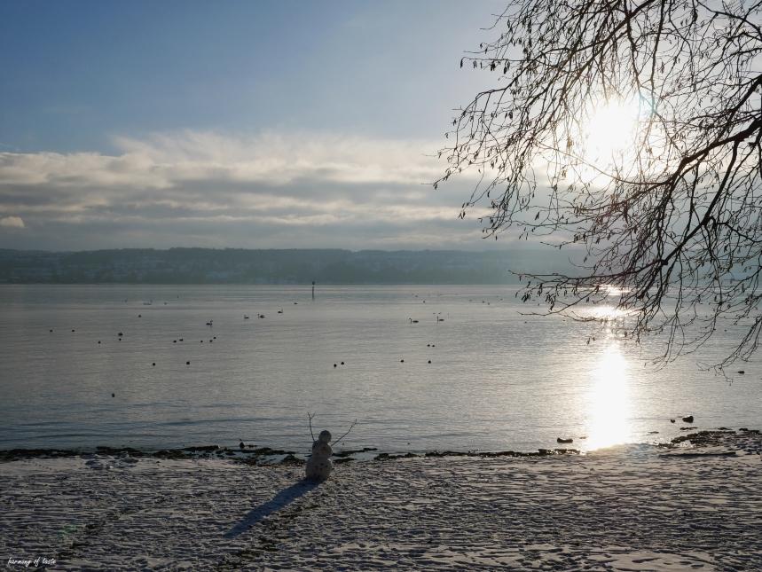 winter in Konstanz 1.JPG