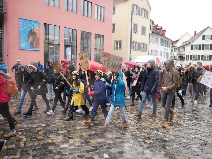 FridaysforFuture 13.JPG