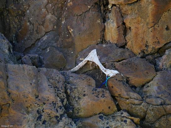 Spiaggia Cala Domestica plastic