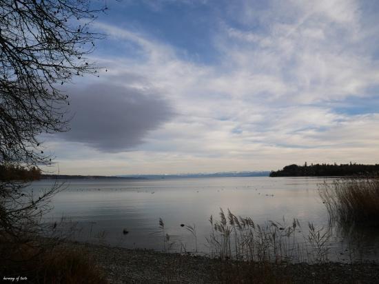Mainau October light and lake
